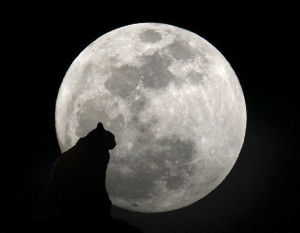 Nero e la luna